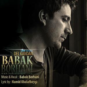 Babak-Borhani-DEL-KANDAN-(Live)-f