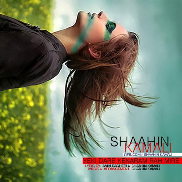 Shahin Kamali - Yeki Dare Kenaram Rah Mire