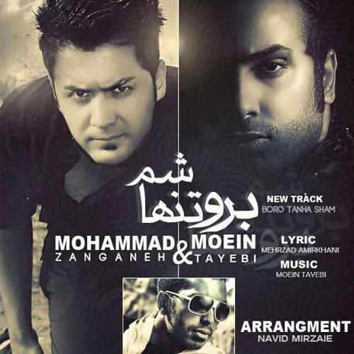 moein-tayebi-boro-tanha-sham-(ft-mohammad--zanganeh)-f
