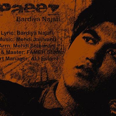 bardiya-najafi-paeiz-f