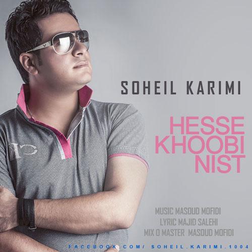 soheil-karimi-hese-khobi-nist-f