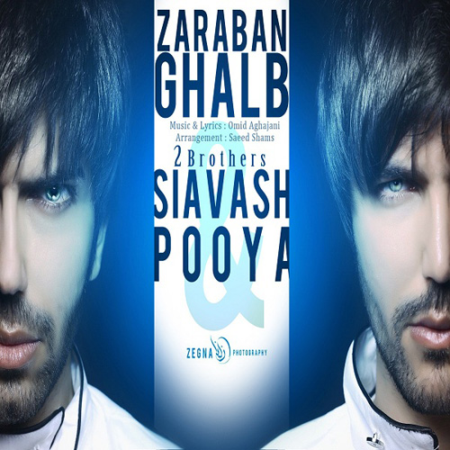 2 Brothers - Zaraban Ghalb