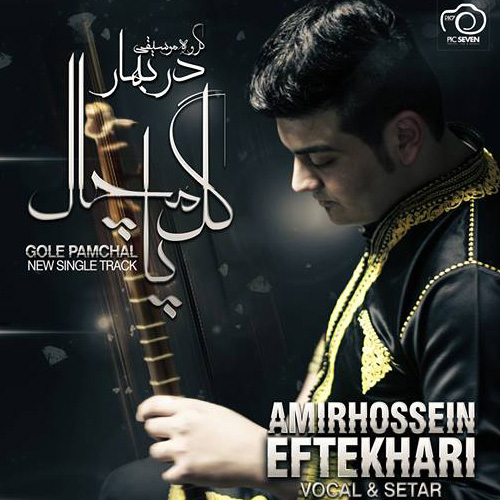 Amirhossein Eftekhari - Gole Pamchal