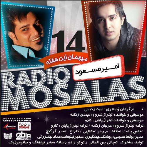 Mosalas - 14 (Amir Masoud)