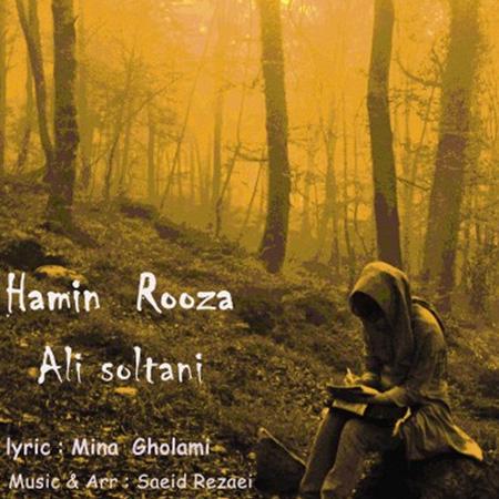 Ali Soltani - Hamin Rooza