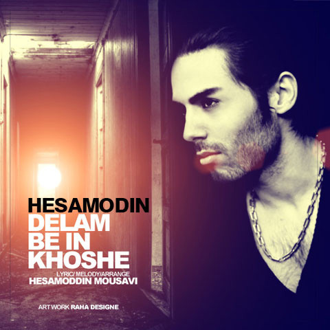 hesamoddin-mousavi-delam-be-in-khoshe-f