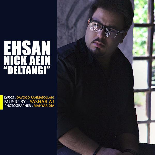 Ehsan-Nick-Aein---Deltangi-f
