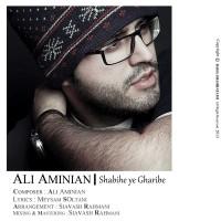 ali-aminain-shabihe-yek-gharibeh