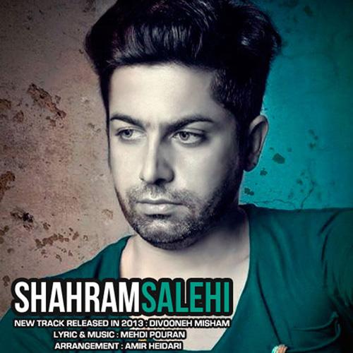 Shahram Salehi - Divooneh Misham