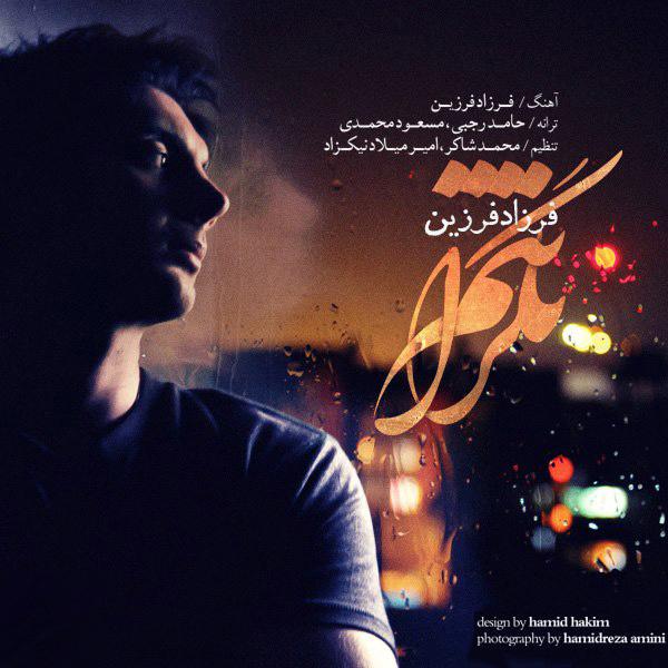 Farzad Farzin - Negaranetam
