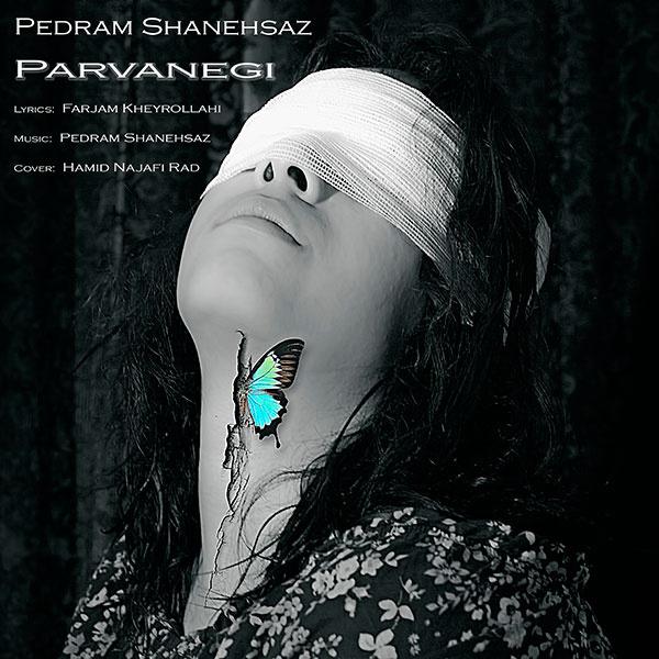 pedram-shanehsaz-parvanegi-f