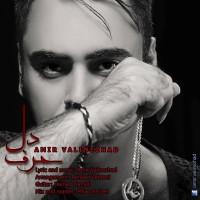Amir-Valinezhad---Harfe-Del-f