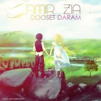 Amir-Zia---Dooset-Daram-f