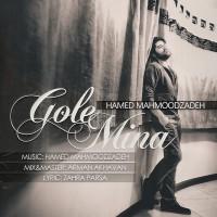 Hamed-Mahmoodzadeh---Gole-Mina-f