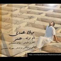 Milad-Mohammadi---Omr-f