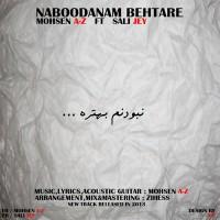 Mohsen-A-Z---Naboodanam-Behtare-(Ft-Sali-Jey)-f