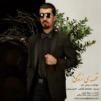 Seyed-Mohammad-Ali-Hoseini---Ghesseye-Zendegi-f
