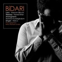 marco-bidari-f