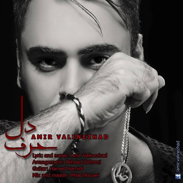 Amir Valinezhad - Harfe Del