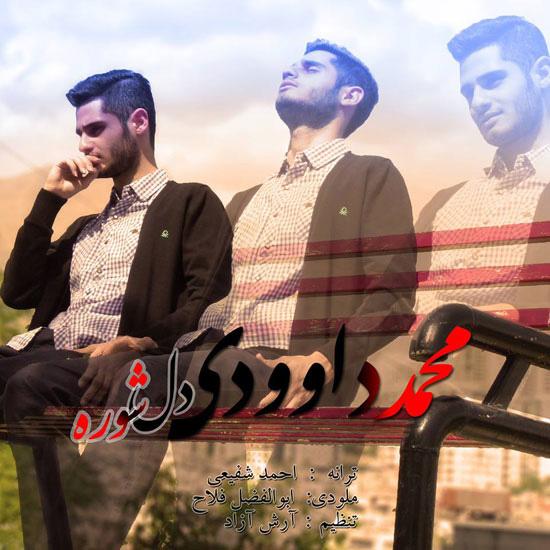 Mohammad Davoudi - Delshore