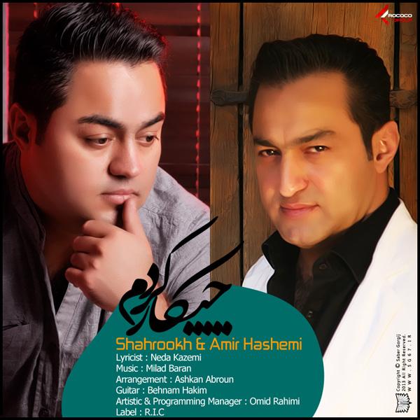 Shahrokh & Amir hashemi - Chikar Kardam