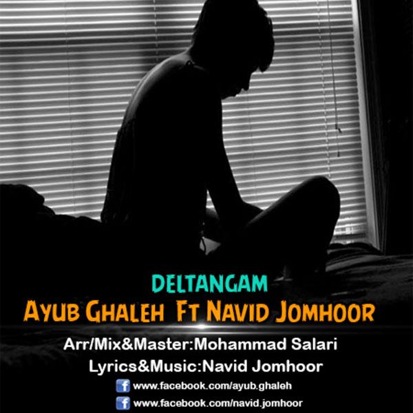 navid-jomhoor-deltangam-(ft-ayub-ghaleh)-f