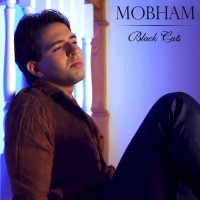 Black-Cats---Mobham-f