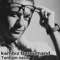 Kambiz-Boroumand---Tanham-Nazar-f
