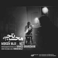 Mohsen-Naaji---Nisti