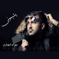 bahram-shahbazi-pashimooni