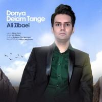 Ali-Zibaei-Donya-Tange-Delam-f