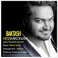 Baktash---Hess-Mikonam