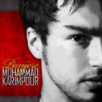 Mohammad-Karimpour---Panjereh