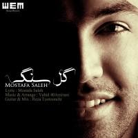 Mostafa-Saleh---Gole-Sang-f
