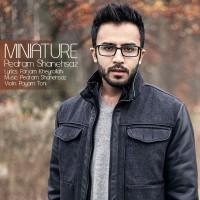 Pedram-Shanehsaz---Miniature-f