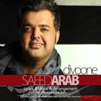 Saeed-Arab-Divooneh-f