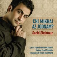 saeid-shahrouz-chi-mikhai-az-joonam