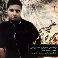 Ali-Jafari---Deltange-To-Misham