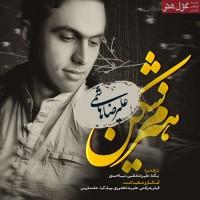 Alireza-Hashemi---Hizom-Shekan-f