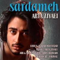 Arta-Ziyaei-Sardameh