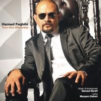 Hamed-Faghidi-Toro-Hess-Mikonam