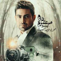 Mehrzad-Khajehamiri-Daram-Miram