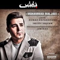 Mohammad-Maljaee---Boghz