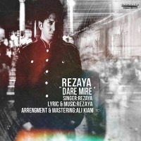 Rezaya-Dare-Mire