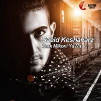 Saeid-Keshavarz---Dark-Mikoni-Ya-Na