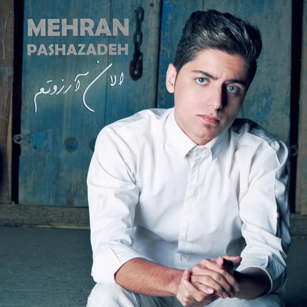 Mehran-Pashazadeh---Alan-Arezootam