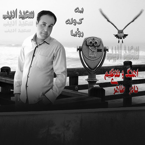 Saeed-Adib---Ye-Kooleh-Roya