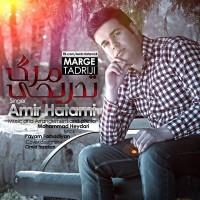 Amir Hatami - Marge Tadriji