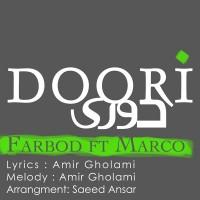 Farbod---Doori