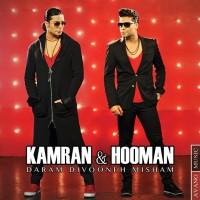 Kamran-and-Hooman_Daram-Divooneh-Misham